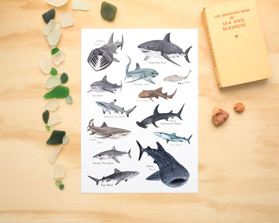 Sharks A4 or A3 Print // Painting Art Print of Sharks // Sea Creature Painting // Shark Painting Print