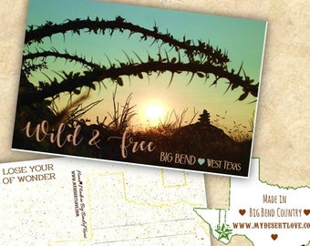 Wild and Free Desert Sunset Photo Postcard, Ocotillo - Hiking Cairn Big Bend Texas Landscape, Handmade Custom, Choose 4x6 or 5x7