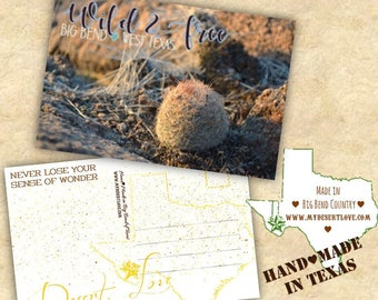 Wild and Free Desert Landscape Handmade Travel Postcard - Cactus - Custom Made To Order in Big Bend Texas - Choose 4x6 or 5x7