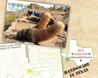 Wild and Free Desert Landscape Handmade Travel Postcard - Rainbow Cactus - Custom Made To Order in Big Bend Texas - Choose 4x6 or 5x7