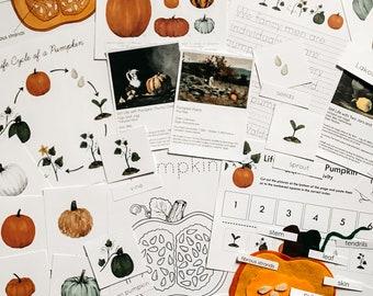 Pumpkin Mini Unit Study