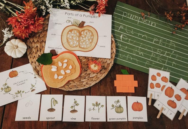 Pumpkin Invitation Bundle/Unit Study image 0