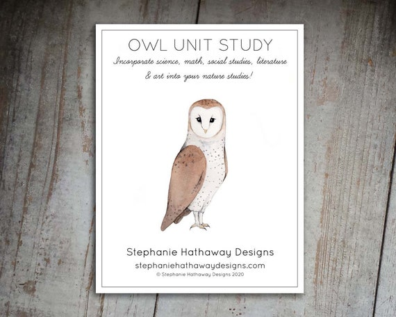 Owl Unit Study Guide
