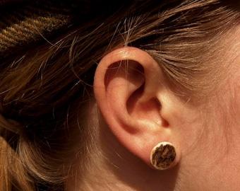 Gold Plated Antler Earrings