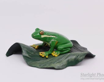 Tree Frog, Frog Sculpture, Tree Frog Art, Frog Gift, Home Decor, Frog Art, Polymer Clay, Clay Frog, Amphibian Art, Clay Sculpture, Clay Art