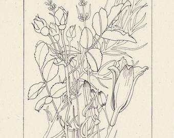 Botanical Bouquet Print