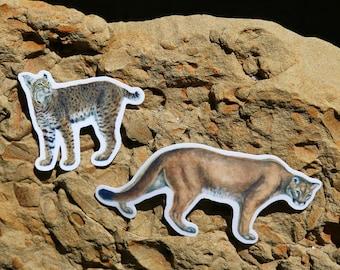 California Cats Sticker Set: Two Vinyl Stickers- Bobcat, Cougar, Mountain Lion, Feline