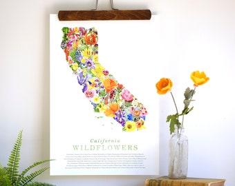 California Wildflower Poster: 45 Native California Wildflowers