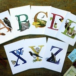 6 or 7 - California Alphabet Letter Prints - Alphabet decor - Classroom art - Nursery art - Personalized California gift - Flora & fauna art