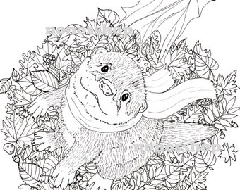 Otter coloring page, digital download to print on A4 format