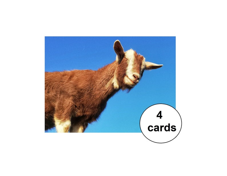 set of 4 post cards celebration card birthday card A6 size goat post card Party goat
