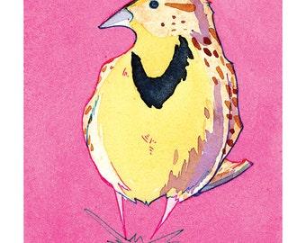 State Birds - Western Meadowlark
