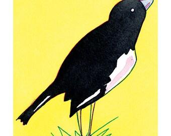 State Birds - Lark Bunting