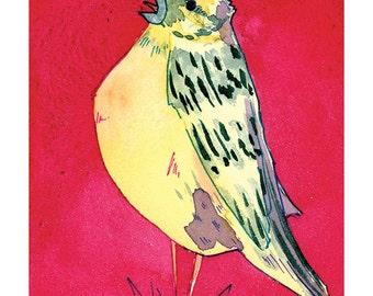 State Birds - Yellowhammer