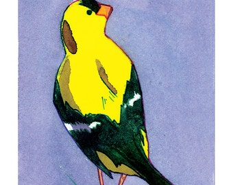 State Birds - Willow Goldfinch