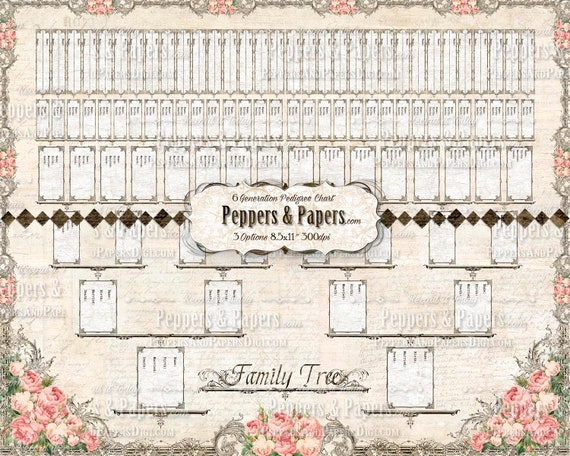 6 Generation Pedigree - YOU PRINT instant download - 16x20 inch Poster - for Ancestry Gifts, Family Records, Ahnentafel Chart  - Old Rose