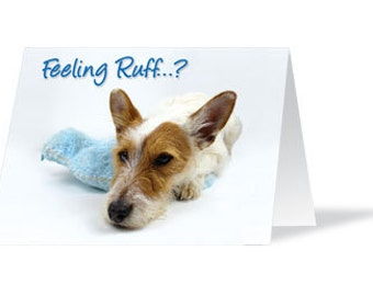 Dog Card Lover Get Well Soon Jack Russell Terrier Cute I Love Dogs