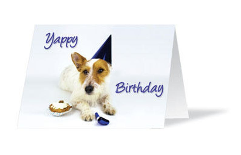 Dog Birthday Card Lover Jack