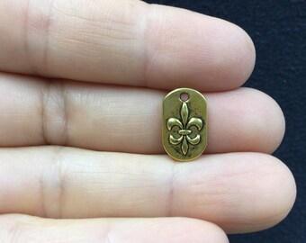 12pcs Small  Fleur de Lis Plaque Antique Gold Charm