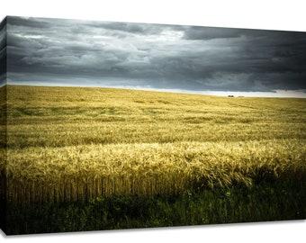 Saskatchewan canvas wall art. Framed wheat field prairie picture. Living room home decor. 3 panel plains art. Yellow and black prints. 11x14