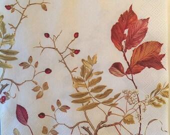 2 Serviettes en papier Baies d/'Automne Decoupage Paper Napkins Autumn Berries
