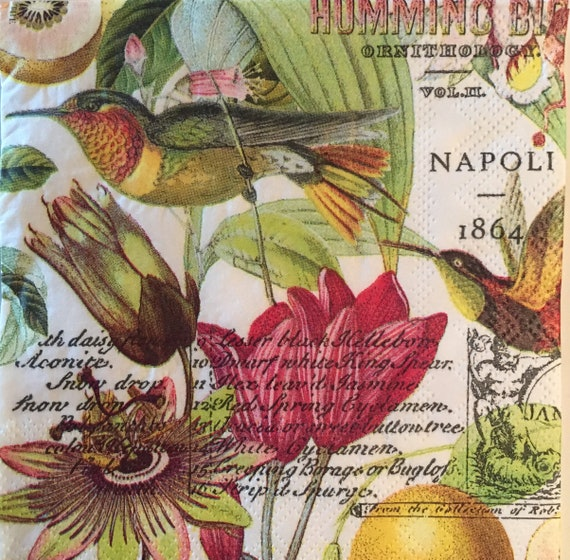 4 X Papel Servilletas Para Decoupage artesanía álbumes de recortes-tropical Colibrí