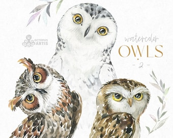 Owls 2. Watercolor animals clipart, woodland, birds, forest, wreath, floral, cute, nursery art, nature, realistic, wild, snowy, burrowing