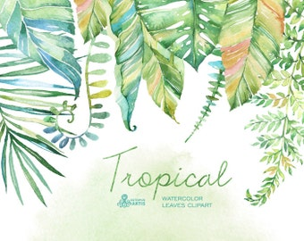 Tropical watercolor leaves. Handpainted clipart, foliage, grass, leaf, wedding invitation, separate elements, greeting, diy, herbal, tropic