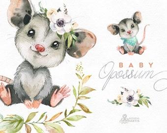 Baby Opossum. Watercolor little animals clipart, woodland, portrait, wreath, flowers, kids, nursery art, baby-shower, cute, floral