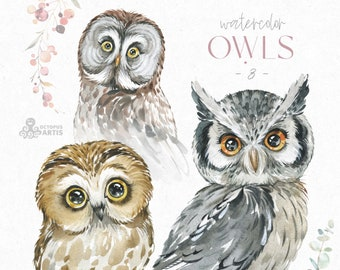 Owls 3. Watercolor animals clipart, woodland, birds, forest, wreath, floral, cute, nursery art, nature, realistic, wild,
