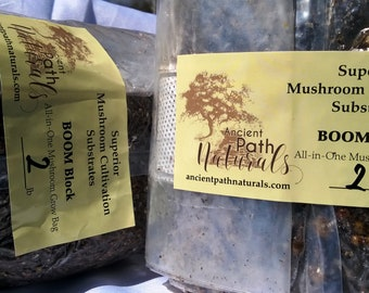 Simple Mushroom Grow Kit Quick Easy Home Grows BIG Fruits | Etsy