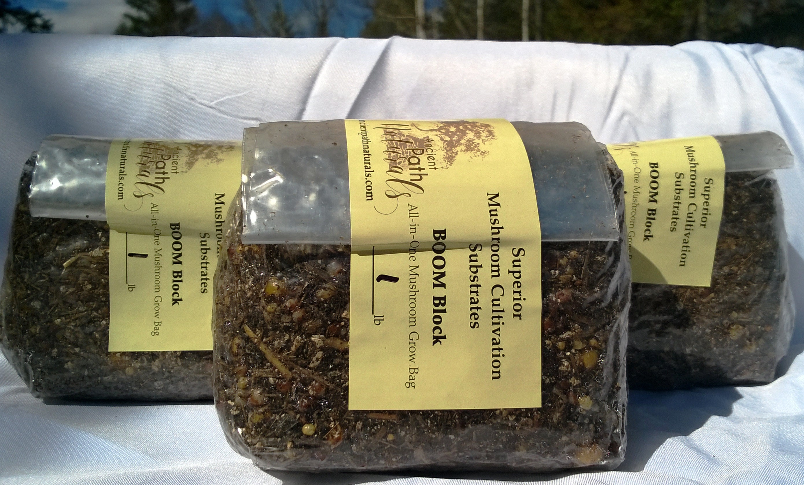 1lb BOOM Block x2 +1 FREE Sterilized Spawn Bags * Just Add spores! Easy  Home Grows for Mushrooms of Any Kind! Fastest Tek * FREE Shipping