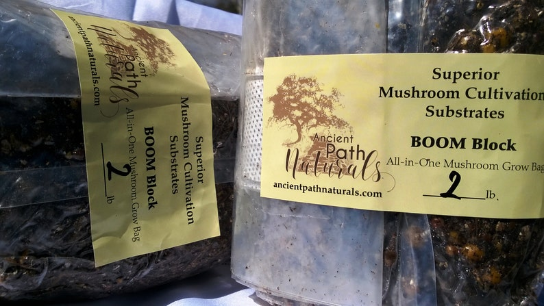 2lb BOOM Blocks x2 Sterile Spawn Bags with All Nutrients! Just add spores!  -Easy Bulk and Grain Mix - Works For Many Species! Free Shipping
