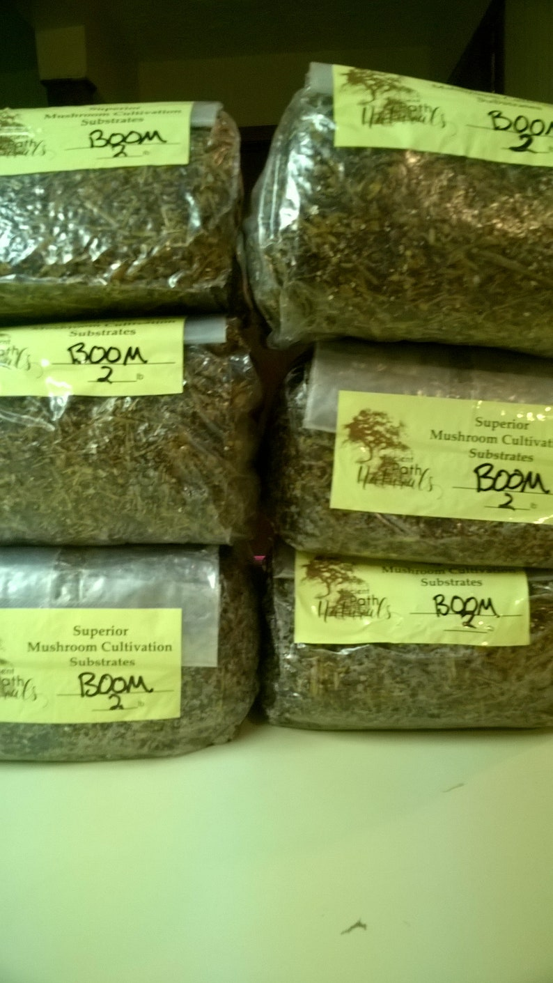 2lb BOOM Blocks x6 Sterile Spawn Bags with All Nutrients! Just add spores!  - Easy Bulk and Grain Mix - Works For Many Species!