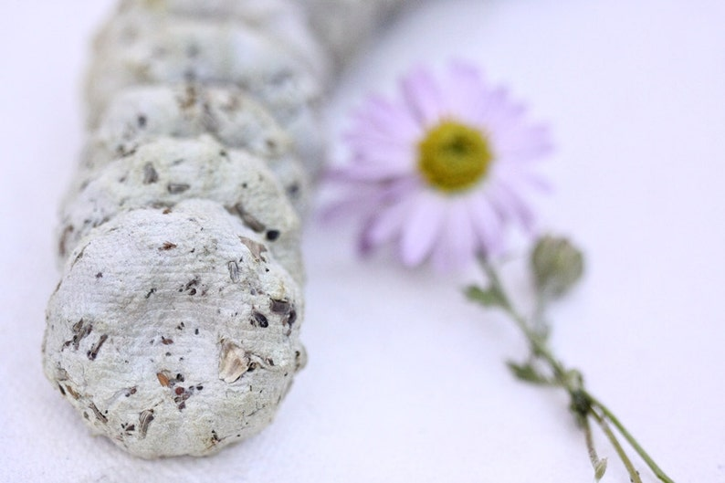 25 Plantable Wildflower Seed Cakes Rustic Boho Chic Garden image 0