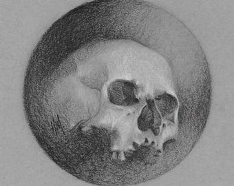 Original Graphite Drawing: Skull Study