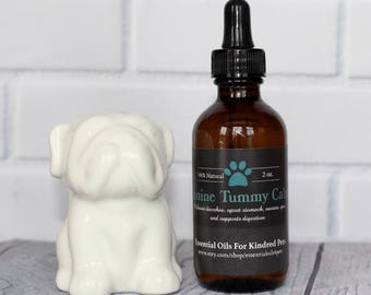 Canine Tummy Calm - Supports Digestion - Upset Stomach -  Car Sickness - Relieves Diarrhea - Vomiting - Bloating - Gas - Nausea - Calms 2oz