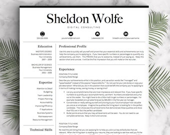 professional resume template for word pages professional