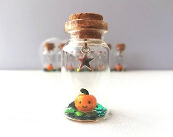Miniature pumpkin decoration. Little pottery pumpkin in a glass bottle. Halloween mini star autumn ornament