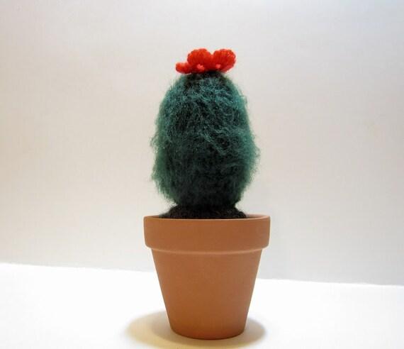 Boho Kaktus Unscharf Häkeln Kaktus Mit Rote Blume Etsy