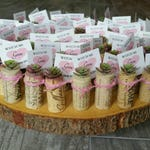 Baby Shower Favors / Its A Girl / Its A Boy / Set of 10 Custom Party Favor / Custom Tags / Wine Cork Faux Succulent Mini Decoration Rosette