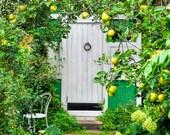 Door Photo Art, Rustic Decor, Country Farmhouse Decor, Door Art Print, Home Decor, Wall Art, Apples, Green White Yellow, Secret Garden