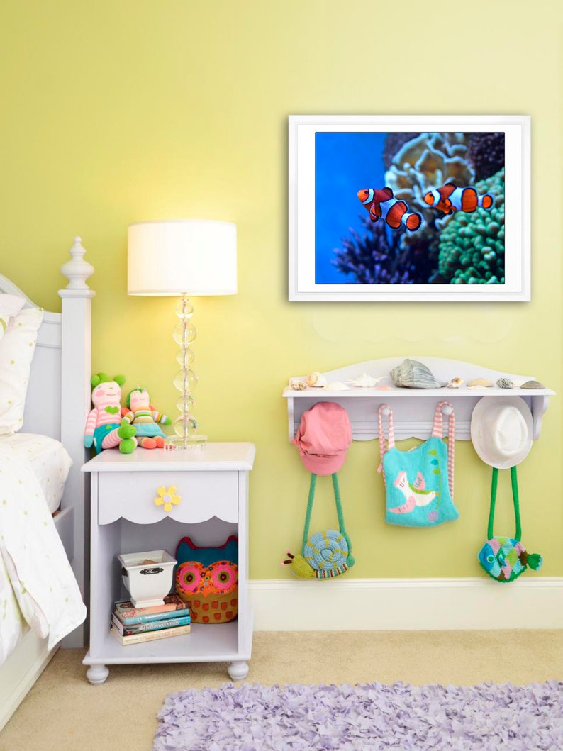 Pesce da trovare Nemo pesce pagliaccio foto bambini camera  2f37133a78c1