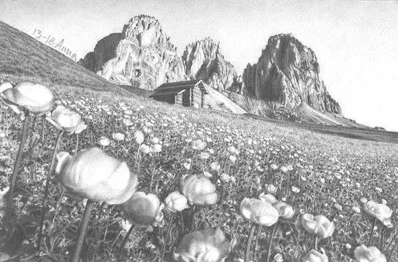Paesaggio Di Montagna Disegno.Paesaggio Di Montagna Panorama Disegno Di Fiori Primavera Etsy