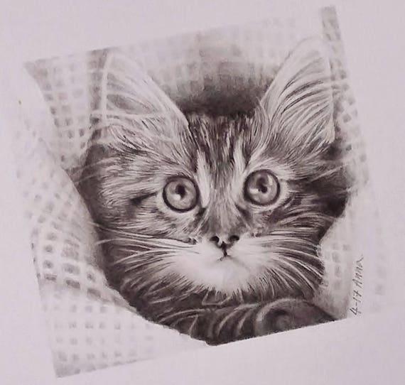 Gatto Ritratto Animale Domestico Disegno Di Gatto Disegno A Etsy