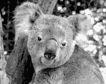 koala 1 layered cut template instant download koala etsy