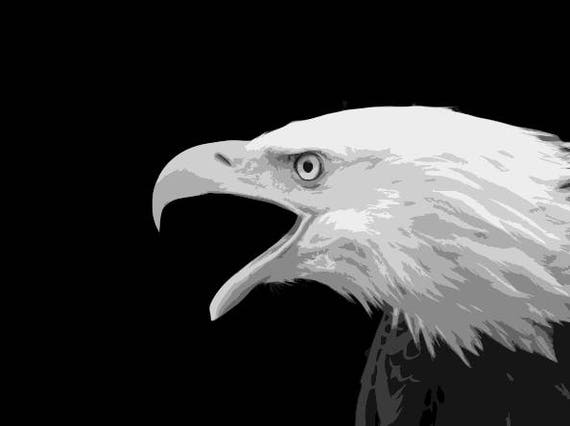 bald eagle layered cut template instant download eagle etsy