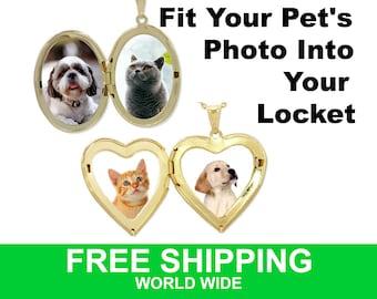 Small locket size photo for pet memorial pendant, bracelet, mini frame. Ideal gift for pet, dog and cat lover, pet loss keepsake .