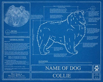 Personalized dog blueprints custom pet by wetnosewigglybutts personalized collie blueprint collie art collie wall art collie gift collie print malvernweather Image collections