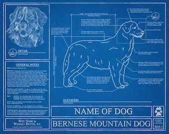 Personalized Bernese Mountain Dog Blueprint / Bernese Mountain Dog Art / Bernese Mountain Dog Wall Art / Bernese Mountain Dog Gift